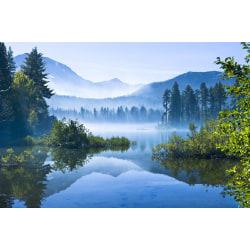 Fototapet Dimmig sjö 500x280cm