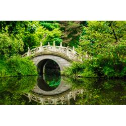 Fototapet Japanese Garden