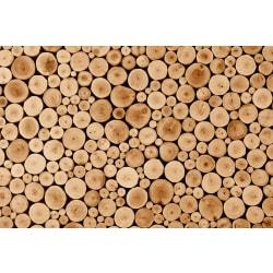 Fototapet Round Teak Wood