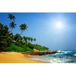 Fototapet  Sri Lanka Tropical Beach