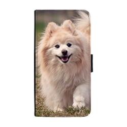 Hund Pomeranian Huawei P10 Lite Plånboksfodral