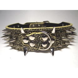 "Hund halsband 2"" svartguld med nitar 39-47cm"