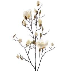 Magnolia Vit 110cm, Snittblommor - Mr. Plant Vit