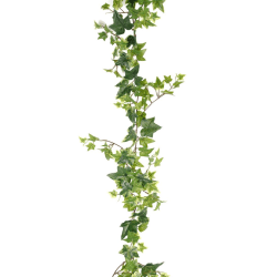 Murgröna 120 cm Grön Grön