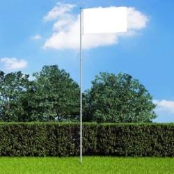 vidaXL Teleskopisk flaggstång aluminium 6 m Silver