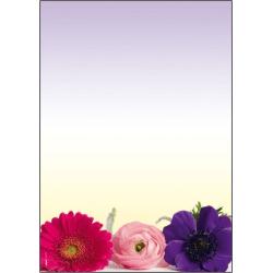 Motivpapper Sigel Flower Harmony DP003 A4 90gram, 50 ark/fp multifärg