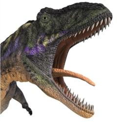Dinosaurie Väggdekor Barnrum