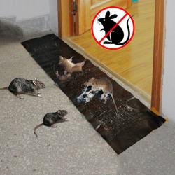 Mice Mouse Rodent Glue Traps Board Sticky Rat Snake Bugs