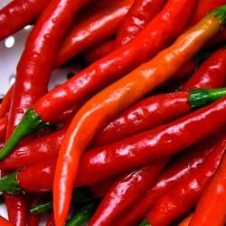"""Chili """"Cayenne"""" 30 frön"""