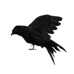 Stuffed Feathered Black Raven Crow Bird Decoration Halloween A