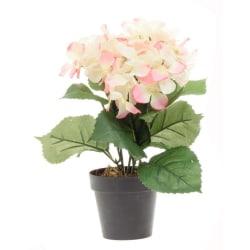 Konstgjord blomma Hydrangea Vit/Rosa 33 cm