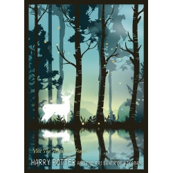 A3 Print - Harry Potter - Visit The Forbidden Forest MultiColor