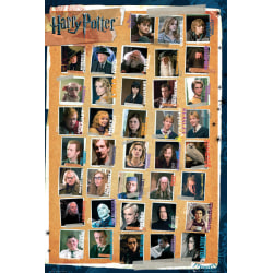 Harry Potter 7 - Characters multifärg
