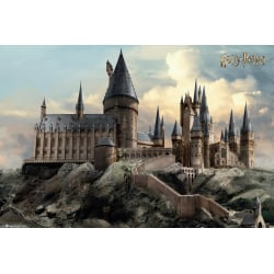 Harry Potter - Hogwarts Day multifärg