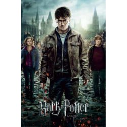 Harry Potter - Part 2 One Sheet MultiColor