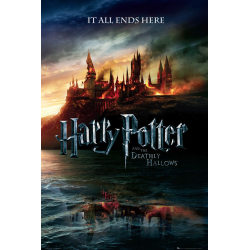 Harry Potter - Teaser MultiColor