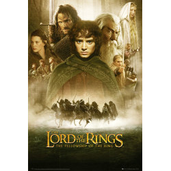 Lord Of The Rings - Fellowship Of The Ring One Sheet multifärg