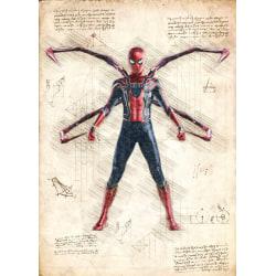 Pergament - Spiderman multifärg