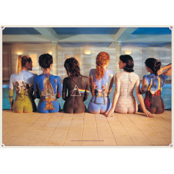 Pink Floyd -Backs MultiColor