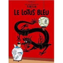 Poster - Tintin Le Lotus Bleu - Tintin Blå Lotus multifärg