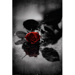 Red Gothic Rose multifärg