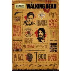 The Walking Dead - Infographic multifärg