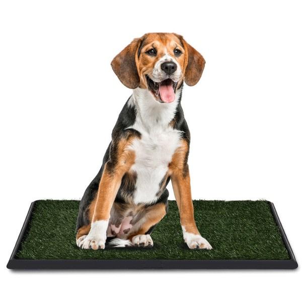 Training Toilet Grass Mat