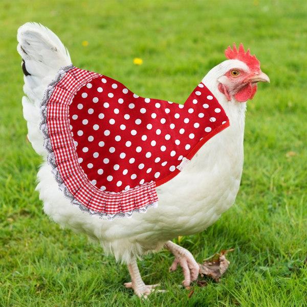 3 bitar kyckling sadel, kyckling jacka höna förkläde fjäder fixer