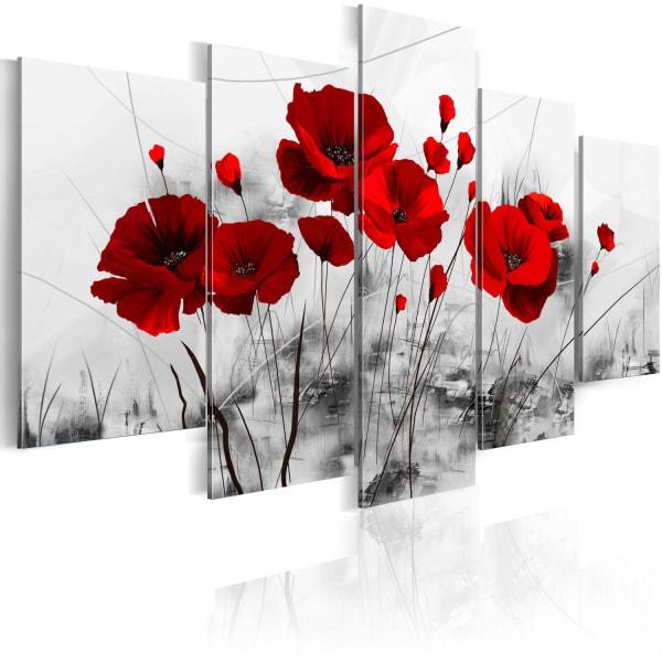 Tavla - vallmo - röd  Mirakel Size: 200x100