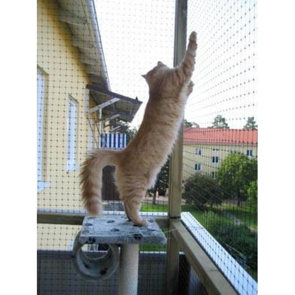 Katt & skyddsnät, 5 X 2 meter Svart