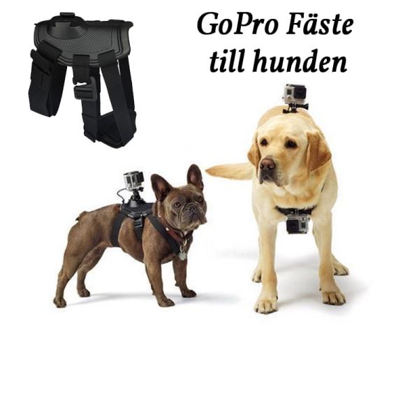 GoPro Fetch / Hund Fäste / GoPro på Hund / GoPro Tillbehör Svart