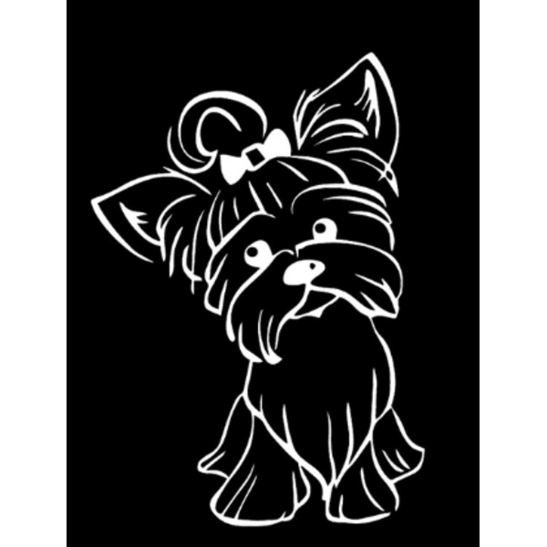 Väggdekor - Yorkshire Terrier Hund vit