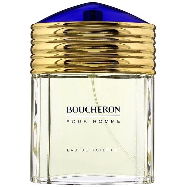 Boucheron Pour Homme EdT 100ml Transparent