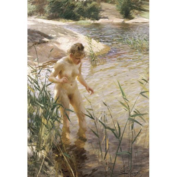 Reflexer (Reflexions),Anders Zorn,60x40cm multifärg