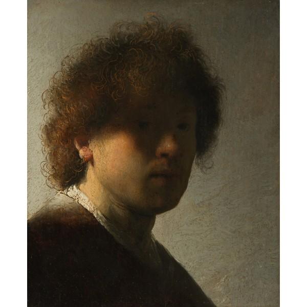 Self-Portrait as a Young Man,Rembrandt van rijn,22.5x18.6cm