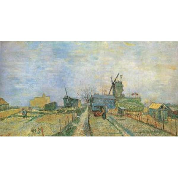 Vegetable Garden in Montmartre,Vincent Van Gogh,44.8x81cm