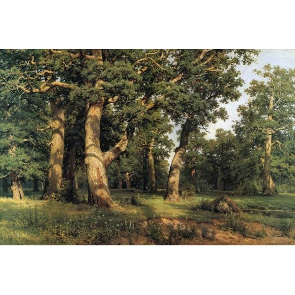 Woods,Ivan Shishkin,60x40cm Brun