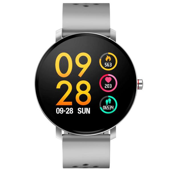 SW-171 Grey Smartwatch