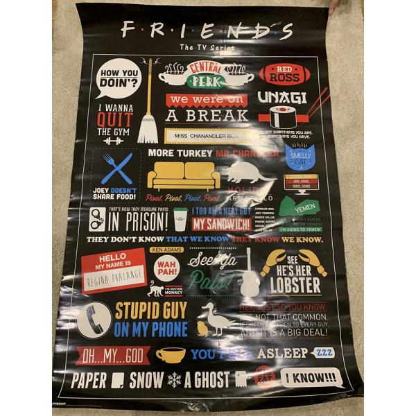 Friends Infographic affisch 61cm x 91.5cm Flerfärgade