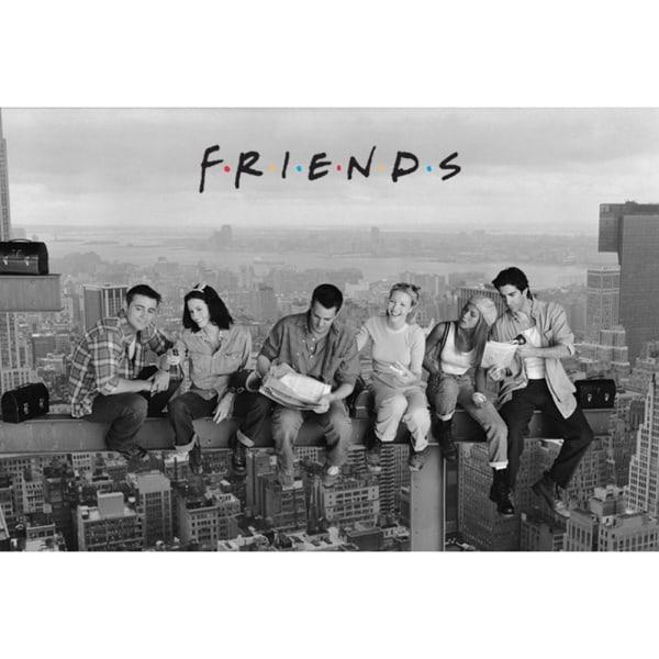 Friends Skyskrapa-affisch One Size Grå