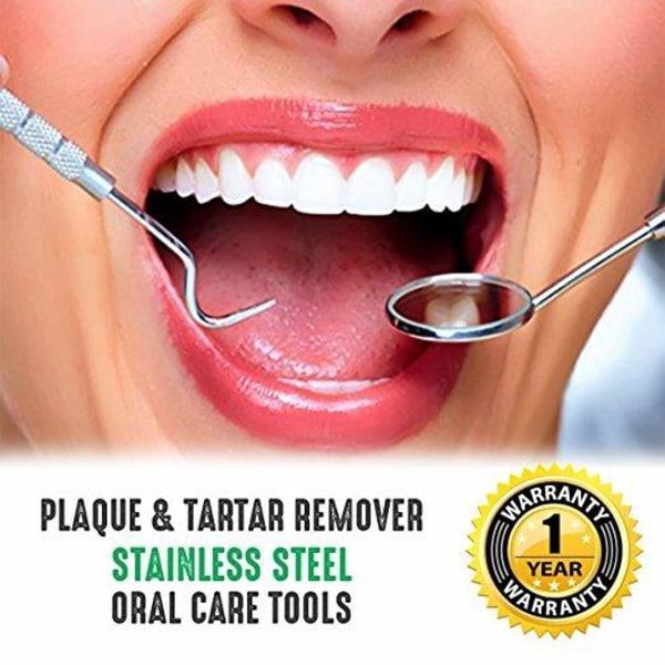 Professionell tandhygien kit - 4 delar rostfritt stål Silver
