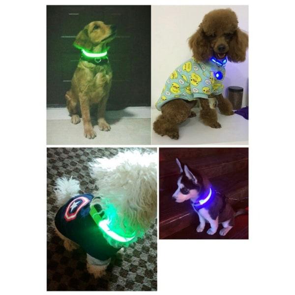 Pet Dog Waterproof LED Luminous Collar P M