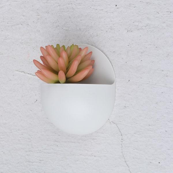 kreativ väggmonterad akryl vas vägghängande planter växt fl