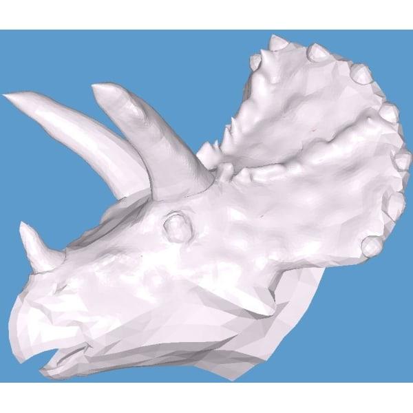 Decorative Triceratops Head, Dinosaur, dino Vit XL