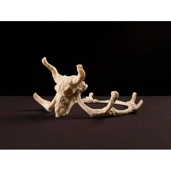 Kung / Drottning Krona, Tiara, bones, djävulen, Halloween Vit one size