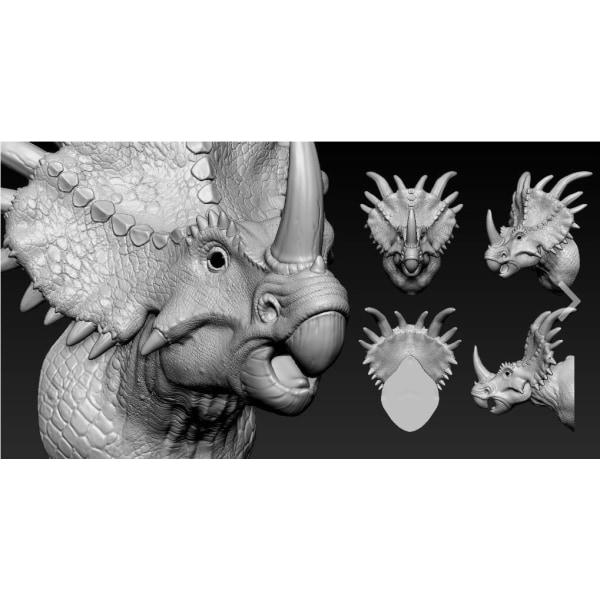 Storlek: XL,  Triceratops  Väldigt verklighetsbaserad  REKOMENDE Gul XL