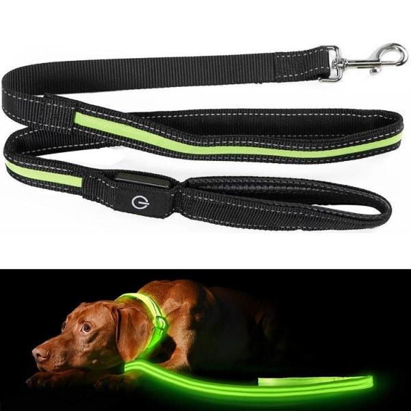 Hundkoppel med LED / Koppel för Hund - 175 cm