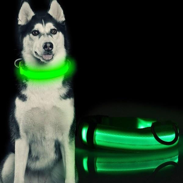 LED Hundhalsband / Halsband för Hund med Reflex - Grön (M) Grön