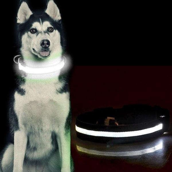 LED Hundhalsband / Halsband för Hund med Reflex - Svart (S) Svart