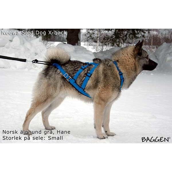 Baggen Neewa Sled dog X-back L Röd